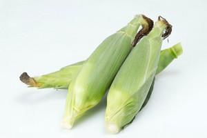 corn1_M